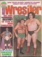 Bruno Sammartino and Andre The Giant.
