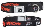 The Miz Dog Collar