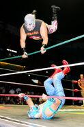 CMLL Martes Arena Mexico (January 29, 2019) 2
