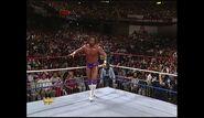 Survivor Series 1989.00012