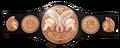 WWE-TagTeam larger