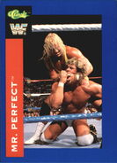 1991 WWF Classic Superstars Cards Mr. Perfect 121
