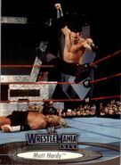 2003 WWE WrestleMania XIX (Fleer) Matt Hardy 28