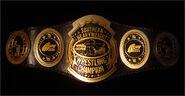 AWA Southern Champion
