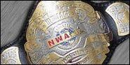 NWA Heritage Championship