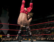 Raw 16 February 2004