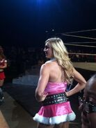 WWE House Show (Dec 29, 14') 3