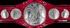 WWE Raw Tag Team Championship