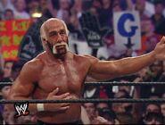 Hulk Hogan The Ultimate Anthology 19
