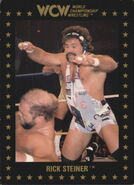 1991 WCW Collectible Trading Cards (Championship Marketing) Rick Steiner 4