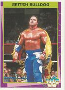 1995 WWF Wrestling Trading Cards (Merlin) British Bulldog 56