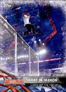 2017 WWE Road to WrestleMania Trading Cards (Topps) Shane McMahon 60
