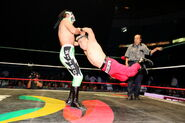 CMLL Martes Arena Mexico (February 12, 2019) 1