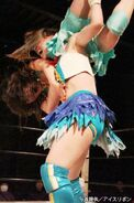 January 17, 2015 Ice Ribbon 3