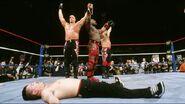WrestleMania 13.18