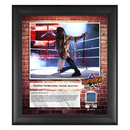 Finn Bàlor SummerSlam 2018 15 x 17 Framed Plaque w Ring Canvas