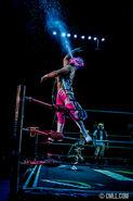 CMLL Domingos Arena Mexico (December 22, 2019) 13
