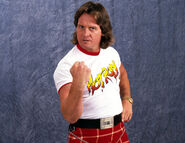 Roddy piper arrested for dui main 10977