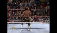Survivor Series 1989.00001