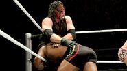 WrestleMania Revenge Tour 2013 - Nottingham.4