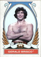 2008 WWE Heritage IV Trading Cards (Topps) Gerald Brisco 77