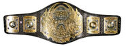 Old TNA world champ