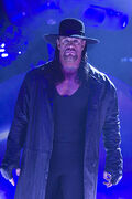 Undertaker Approaches the Ring