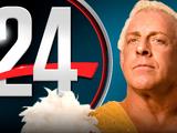 WWE 24: Ric Flair: The Final Farewell