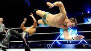 WrestleMania Revenge Tour 2013 - Cardiff.4