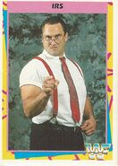 1995 WWF Wrestling Trading Cards (Merlin) IRS 2