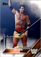 2016 WWE (Topps) Scott Hall 91
