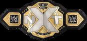 NXT Women's Championship (2017)