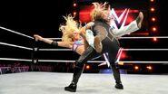 WrestleMania Revenge Tour 2015 - Dublin.12