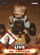 2013 TNA Impact Wrestling Live Trading Cards (Tristar) Mr. Anderson 90