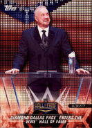 2018 WWE Road to Wrestlemania Trading Cards (Topps) Diamond Dallas Page 22