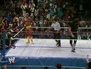 Hulk Hogan The Ultimate Anthology 14
