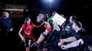 WrestleMania Revenge Tour 2015 - Hamburg.11