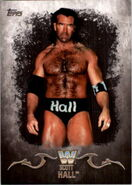 2016 Topps WWE Undisputed Wrestling Cards Scott Hall 88