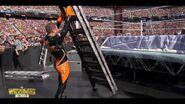 Best of WrestleMania Theater.00008