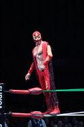 CMLL Martes Arena Mexico 8-29-17 1