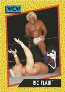 1991 WCW (Impel) Ric Flair 43