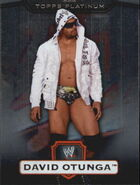 2010 WWE Platinum Trading Cards David Otunga 52
