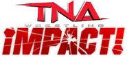 Impact Logo Ver 4.0
