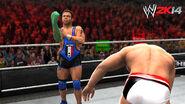 WWE 2K14 Screenshot.117