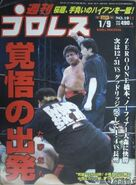 Weekly Pro Wrestling 1011