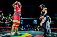CMLL Martes Arena Mexico (August 27, 2019) 18