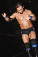 ROH Rising Above 2007 12