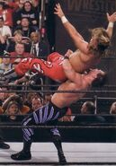 Wrestlemania 20-German