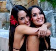 Bella Twins.10