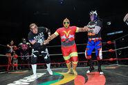 CMLL Martes Arena Mexico (January 15, 2019) 32
